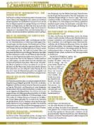 thumbnail_inkota_infoblatt12_nahrungsmittelspekulation_02.jpg