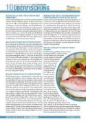 infoblatt10_ueberfischung_web_01.jpg